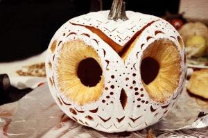 owl+pumpkin